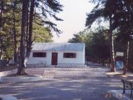 camp 6_1